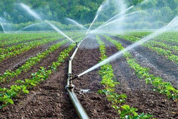 بیش از ۷۰ درصد اراضی کشاورزی استان به سیستم آبیاری نوین مجهز نشده اند