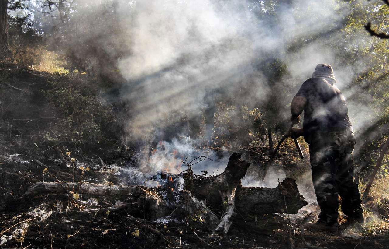 بررسی علل آتش سوزی در جنگل «درازنو» ادامه دارد